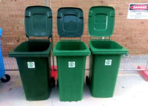 picture of line of wheelie bins at workplace